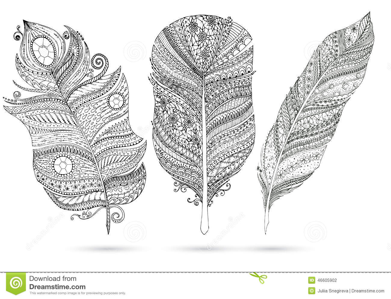 Vector Set Of Doodle Feathers On White Background Stock