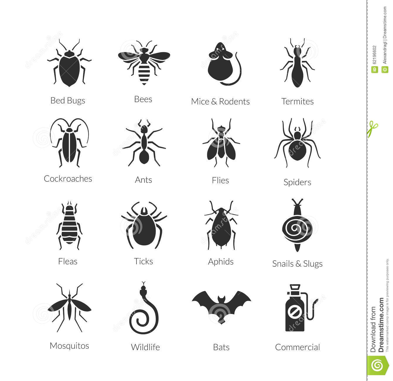 Clipart Insect