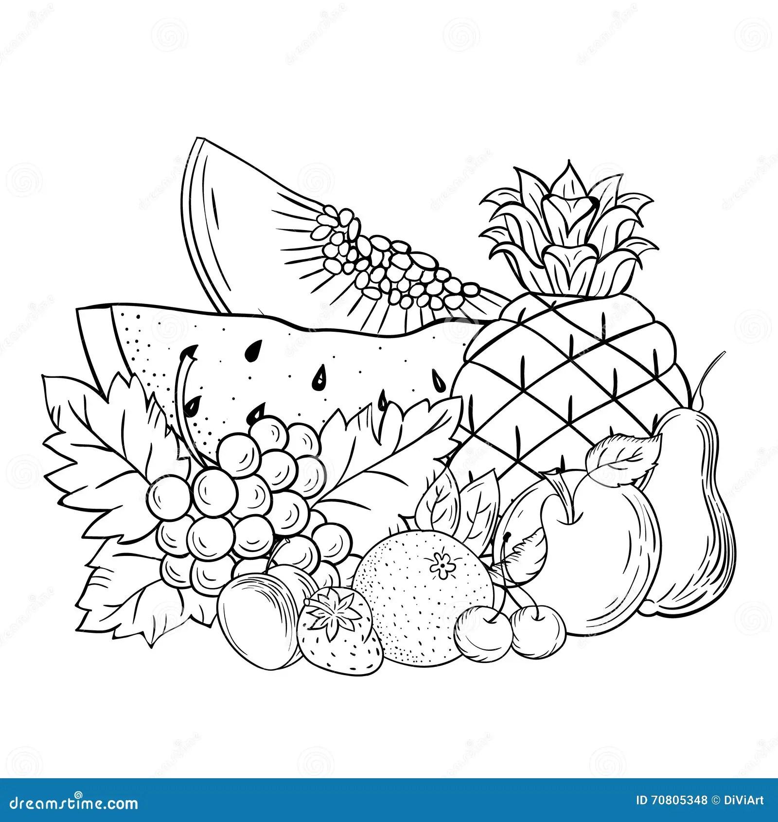 Vector Sketch Still Life Fruit Stock Vector