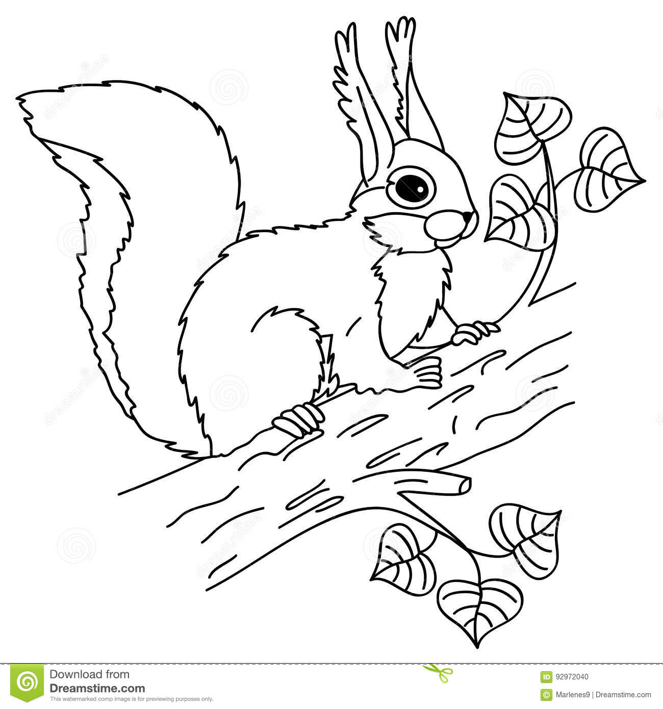 Vector Squirrel Sitting On The Tree Stock Vector