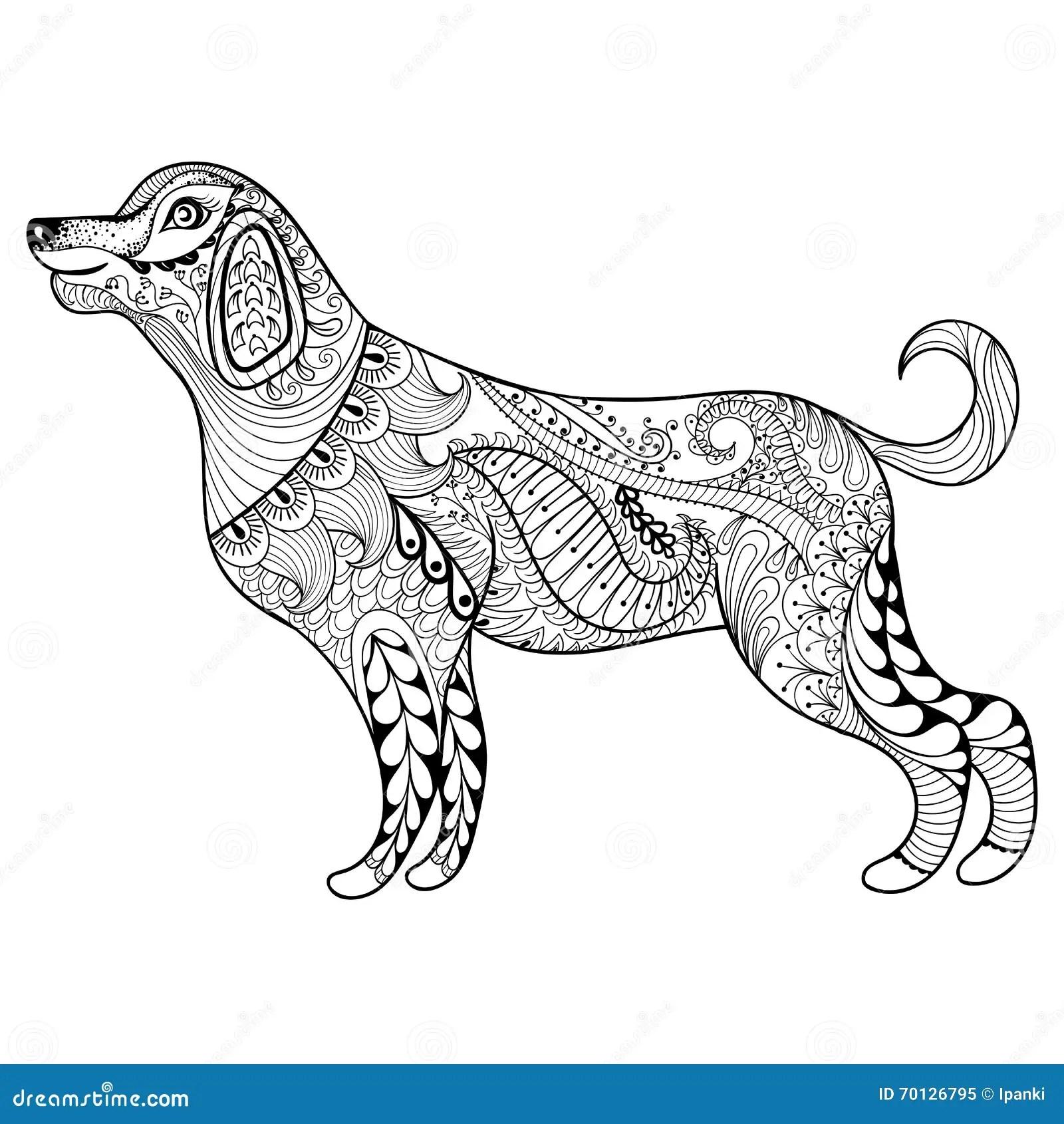 Vektor Zentangle Hundedruck Fur Erwachsene Farbtonseite