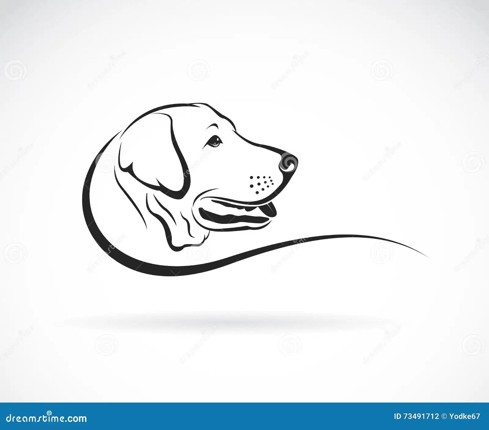 Vektorbild Av Ett Hundlabrador Huvud Vektor Illustrationer