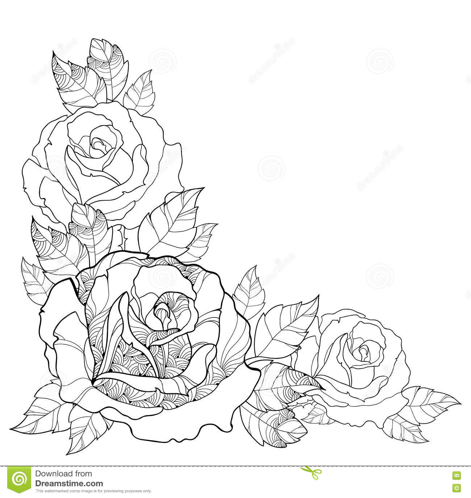 Vektorillustration Med Oversiktsrosblomman Och Lovverk Som