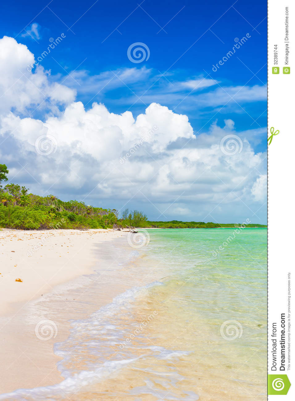 Vertical Image Of A Deserted Tropical Beach At Coco Key In