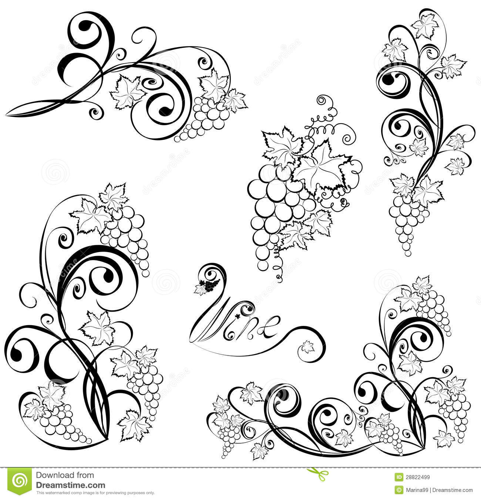 Vigna Elementi Di Disegno Del Vino Illustrazione