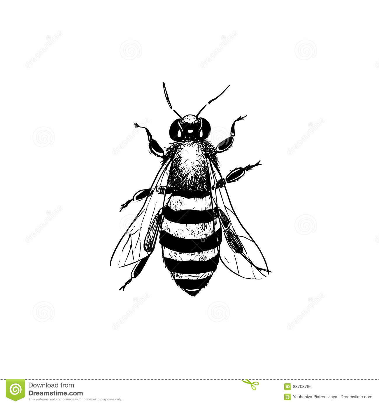 Queen Bee Clipart