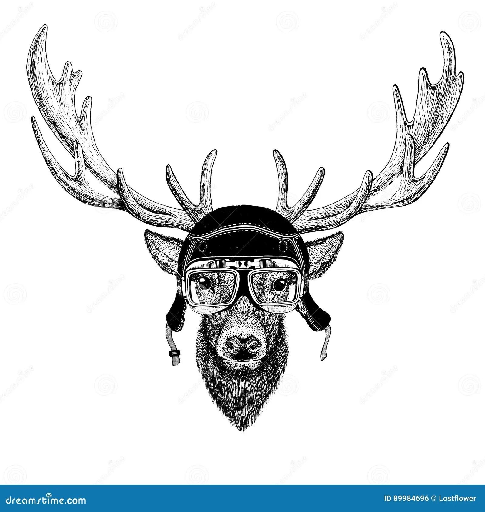 Vintage Images Of Deer For T Shirt Design For Motorcycle