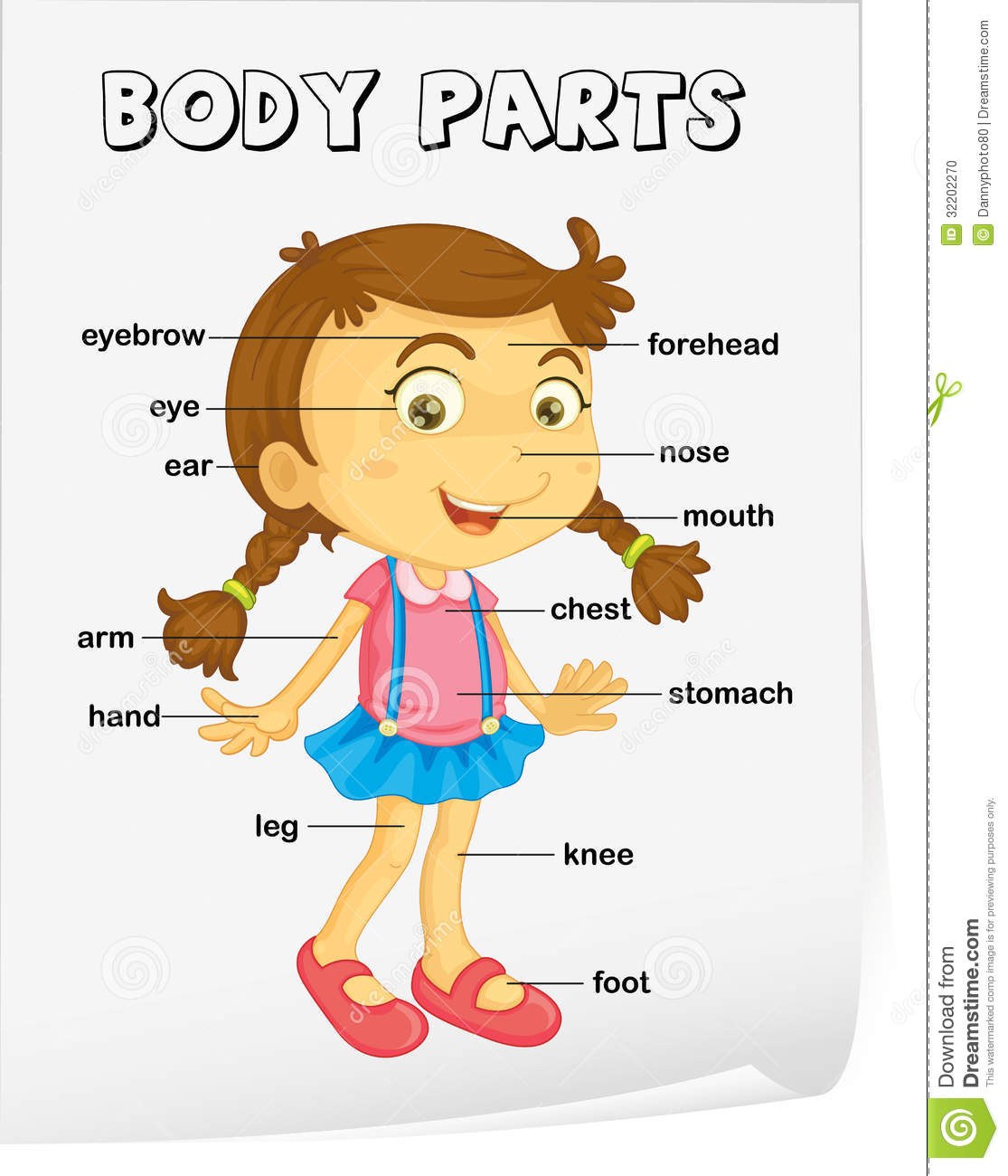 Spanish Worksheets Parts Of The Body