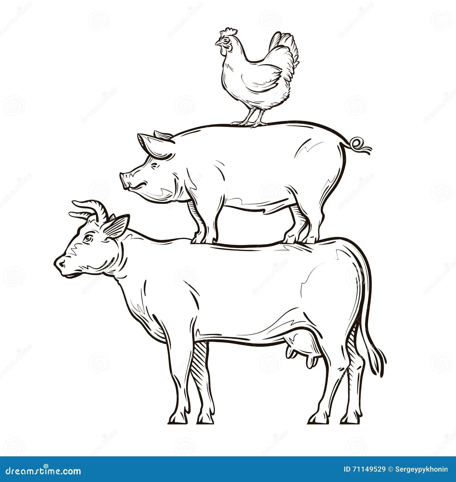 Von Hand Gezeichnete Kuh Schwein Huhn Auch Im Corel