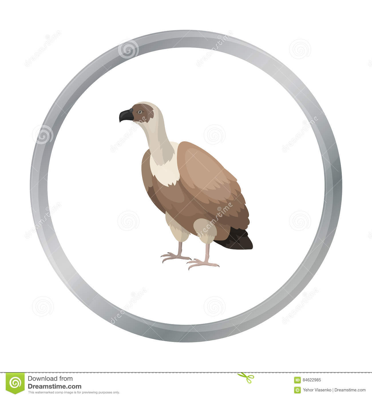 Illustration Of Vulture Vocabulary Part Of Body Vector