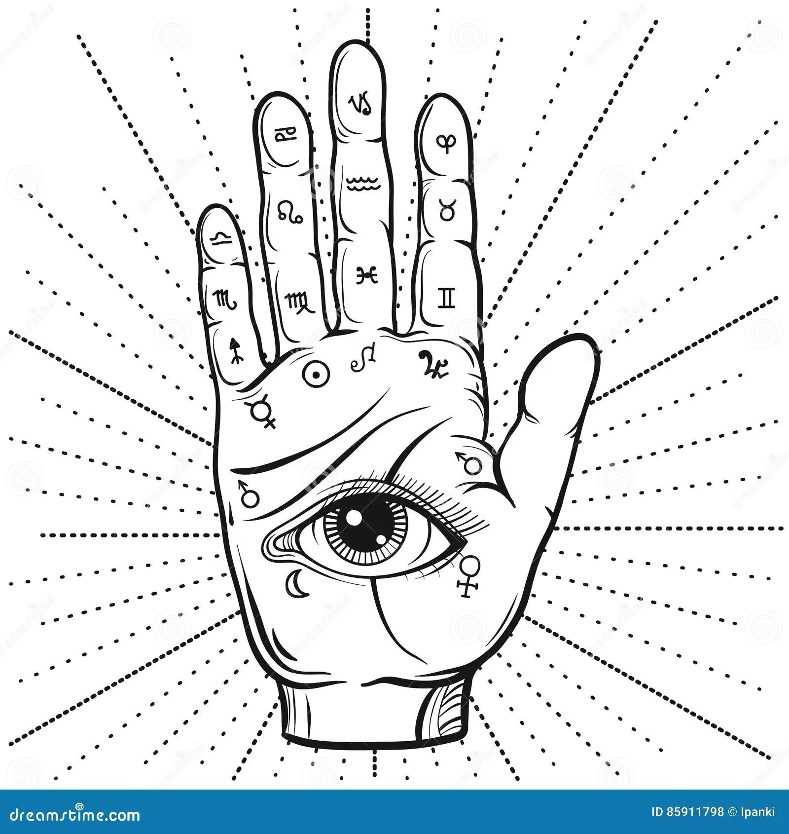 Wahrsager Hand Mit Handlesekunstdiagramm Handdrawn Ganz