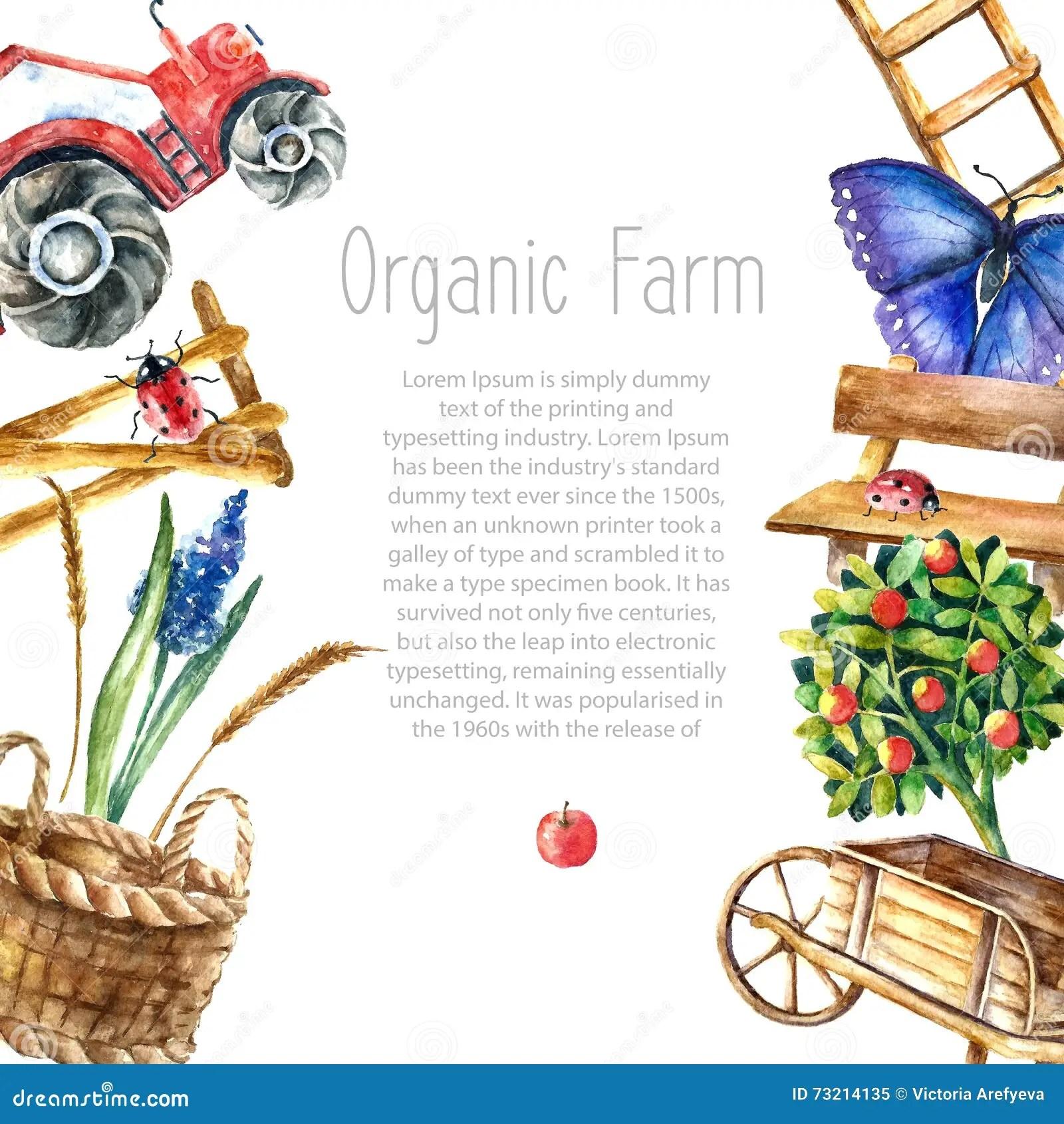 Watercolor Organic Farm Stock Vector Image Of Corn
