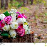 Wedding Bridal Bouquet With White Orchids Roses Red Berries Stock Photo Image Of Engagement Green 112342220