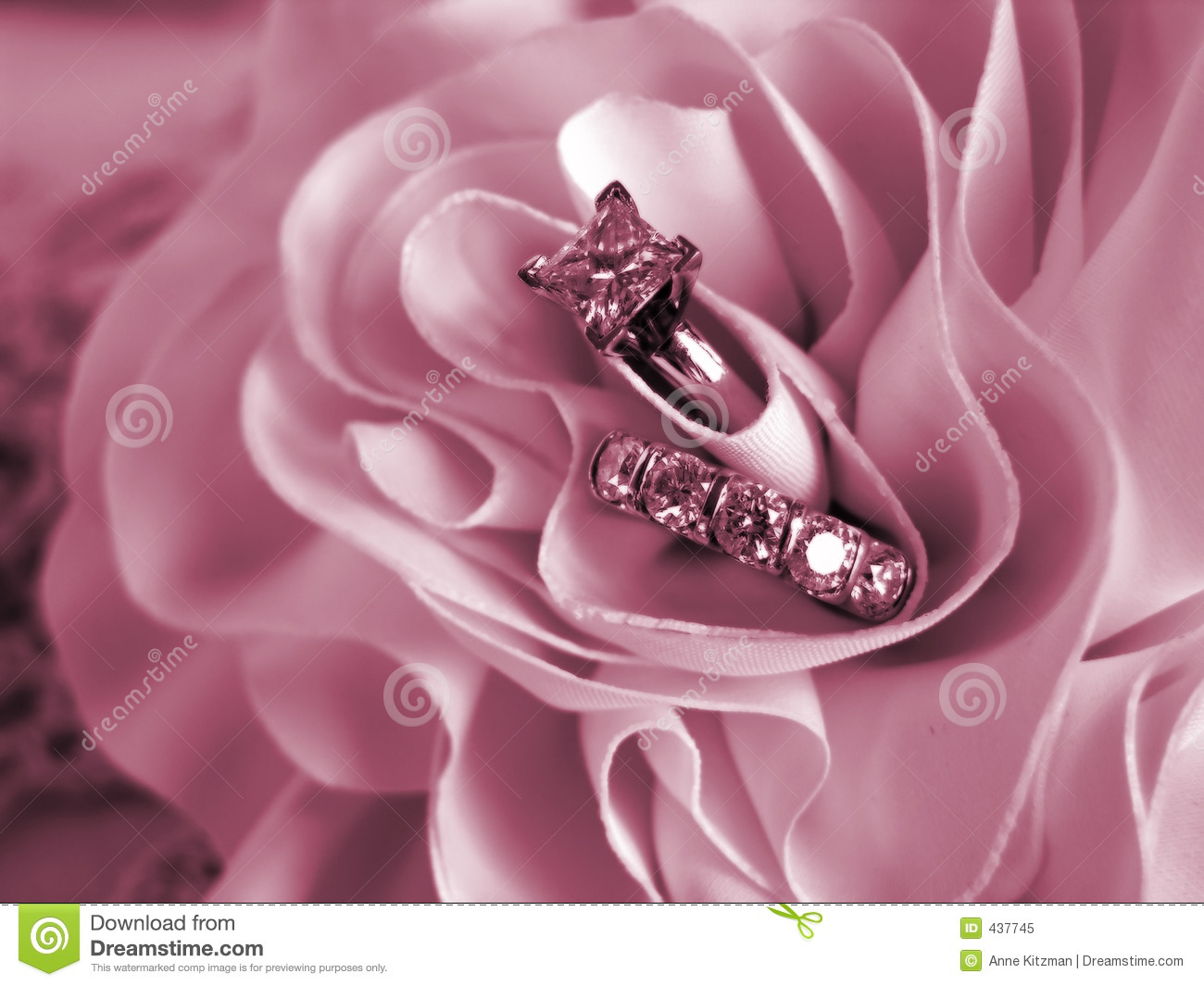 Wedding Rings Soft Mood Pink Stock Image Image Of