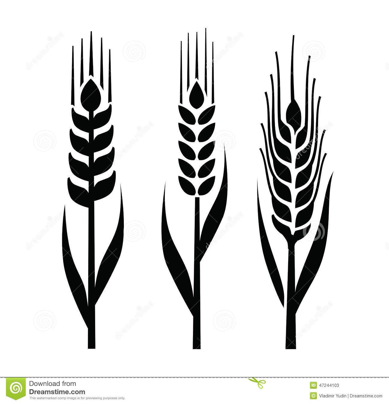 Wheat Icon Stock Vector Illustration Of Seed Graphic