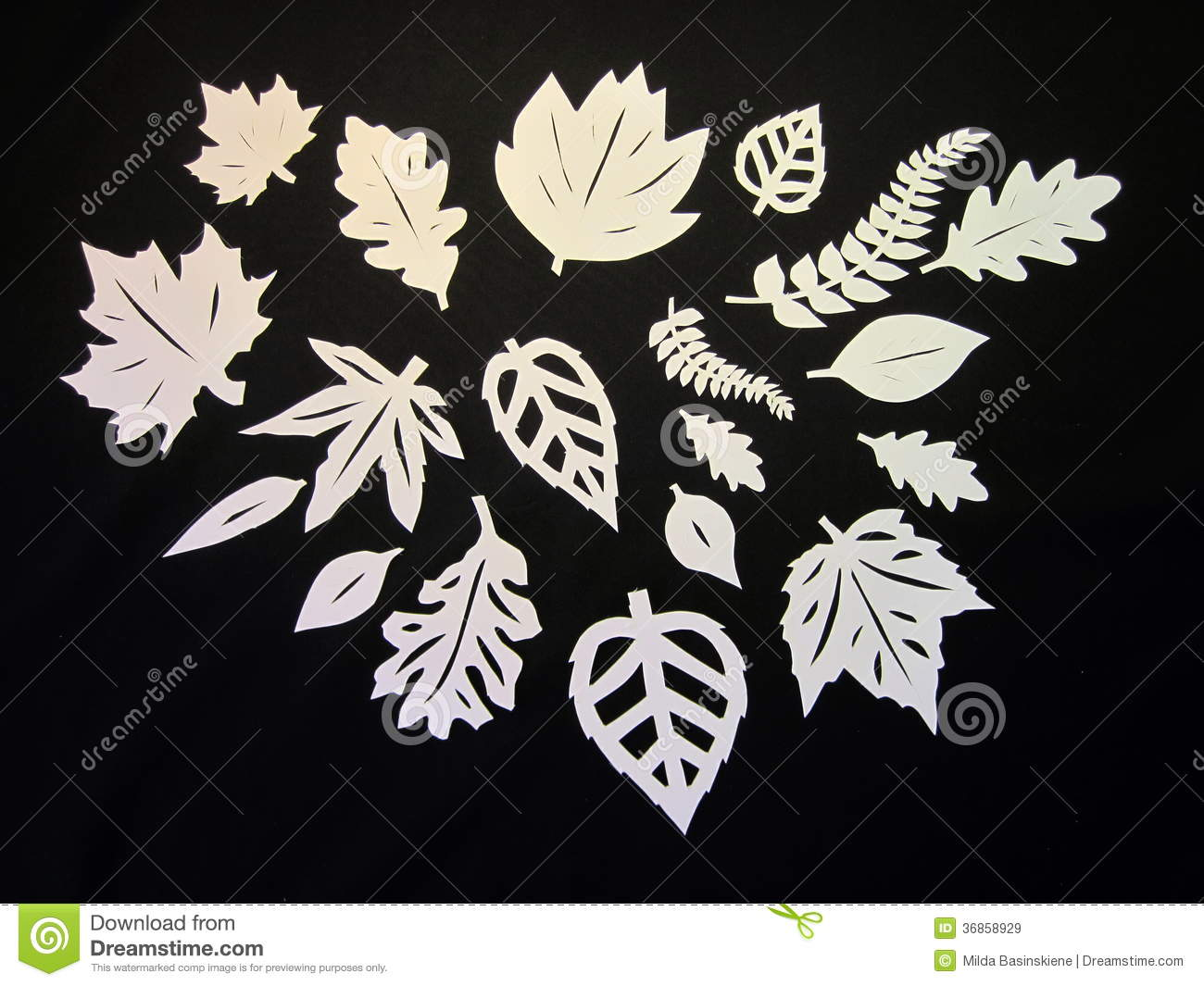White Leaves Paper Cutting Stock Image