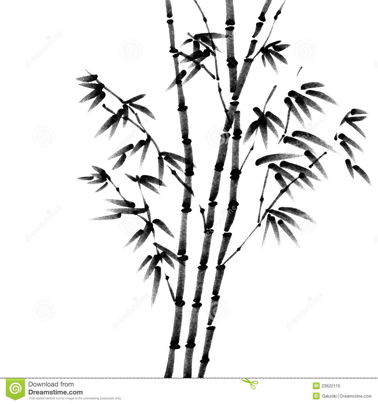 Wild Bamboo Stock Illustration Illustration Of Leaves