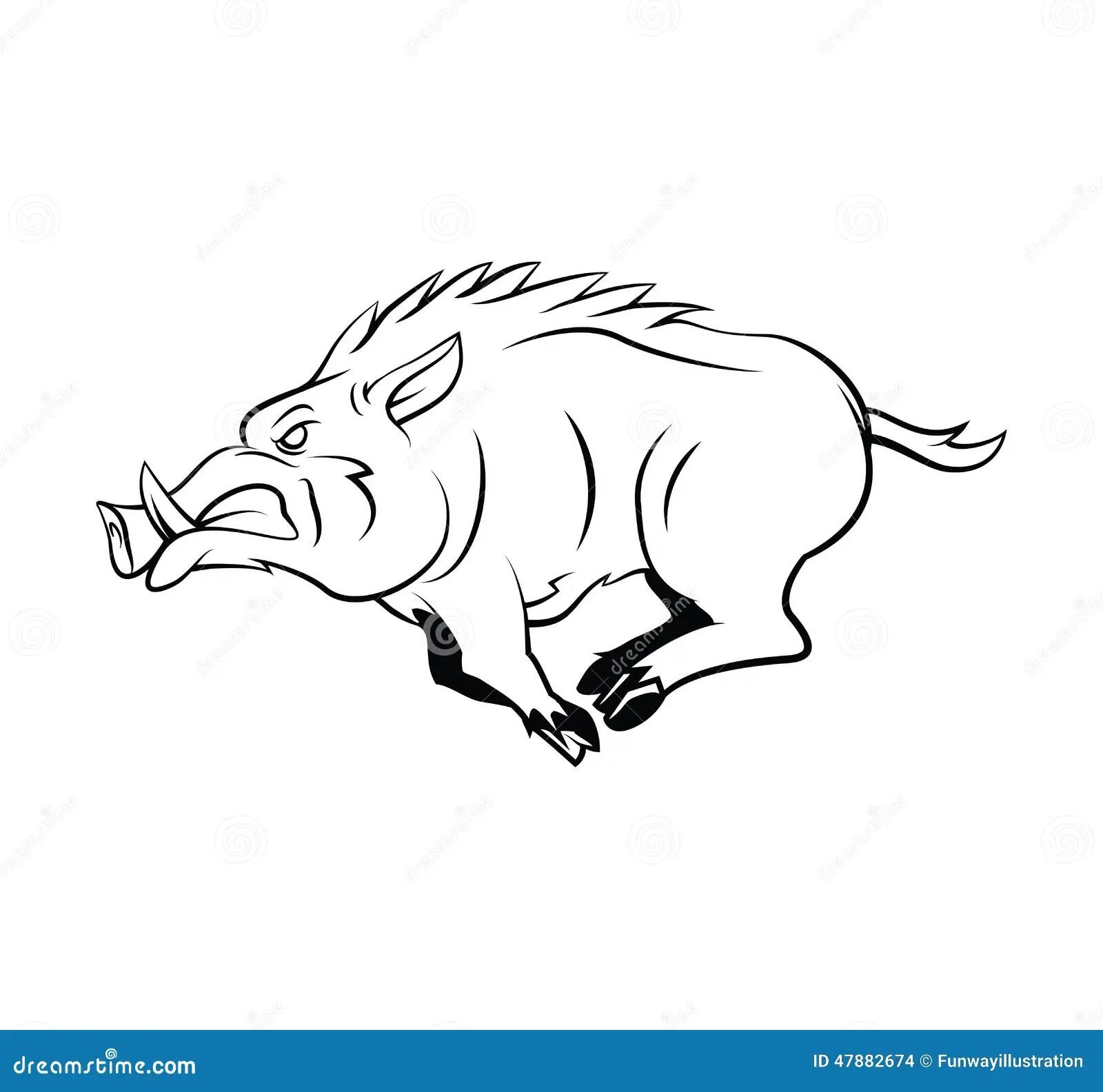 Wild Boar Stock Vector Illustration Of Mammal Wild
