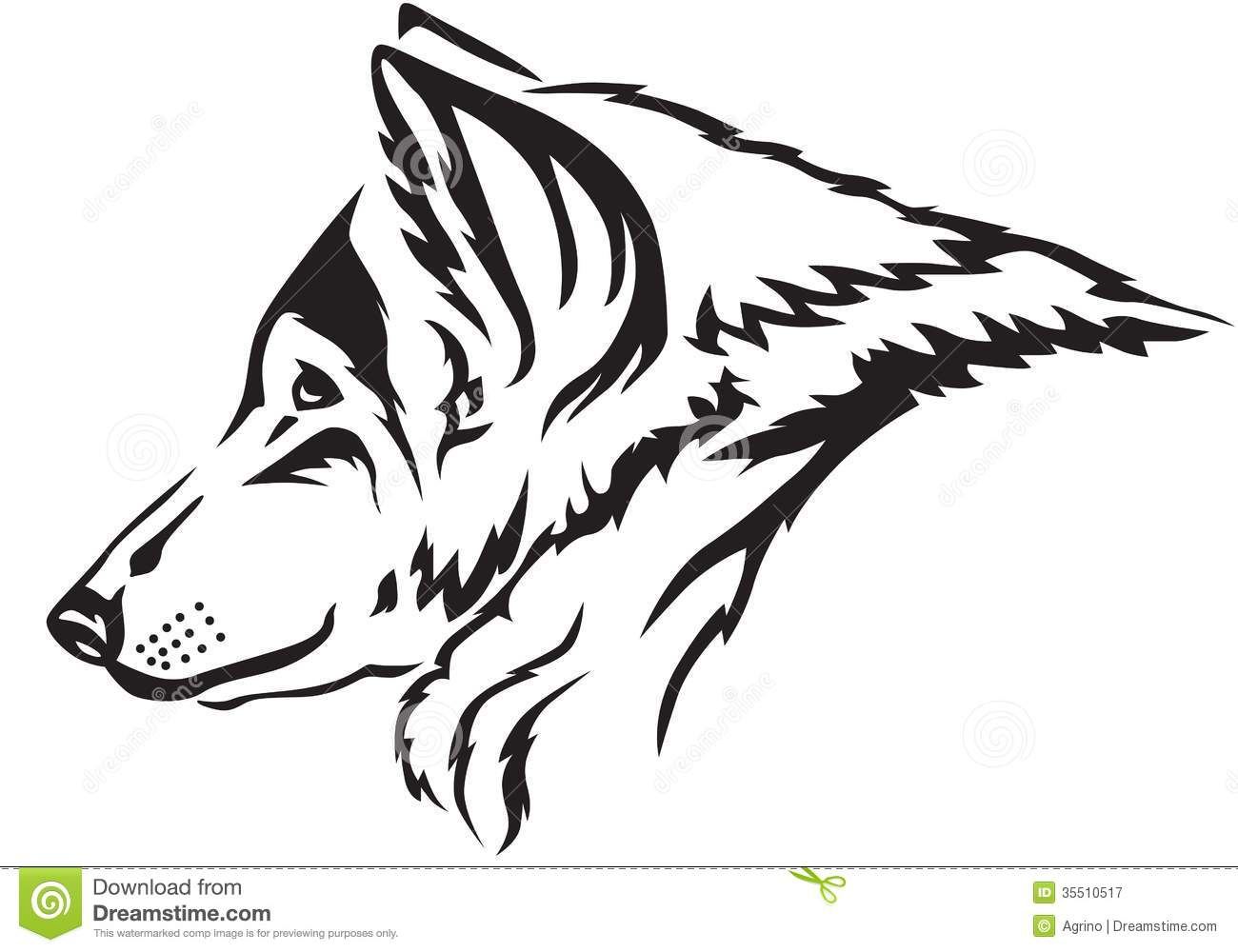 Wolf Muzzle Royalty Free Stock Photography