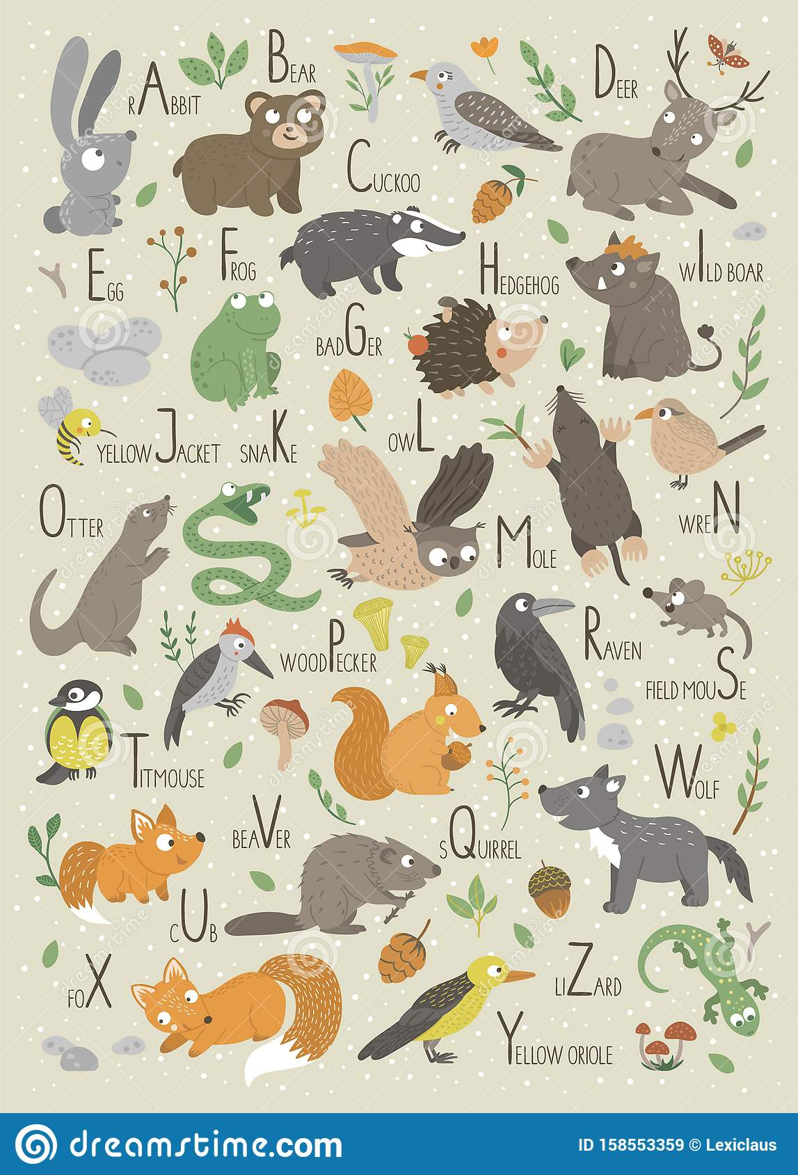 Woodland Alphabet For Children Cute Flat Abc With Forest