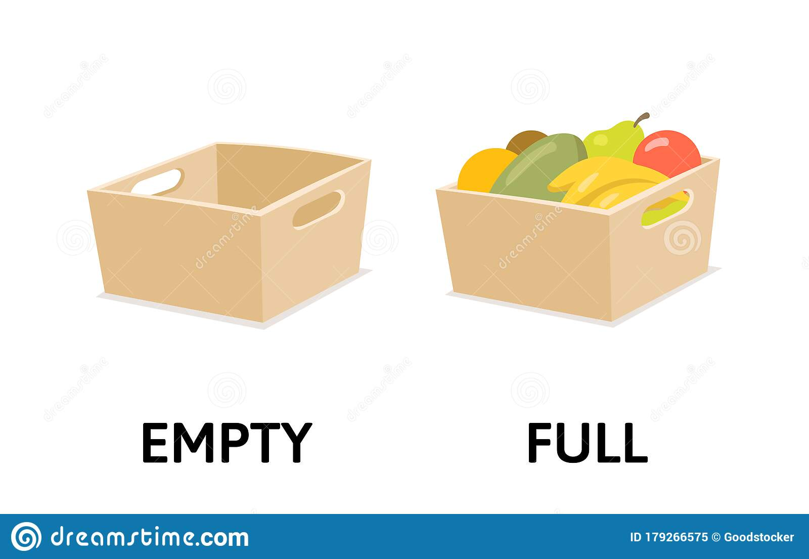 Words Full And Empty Flashcard With Box Fruits And