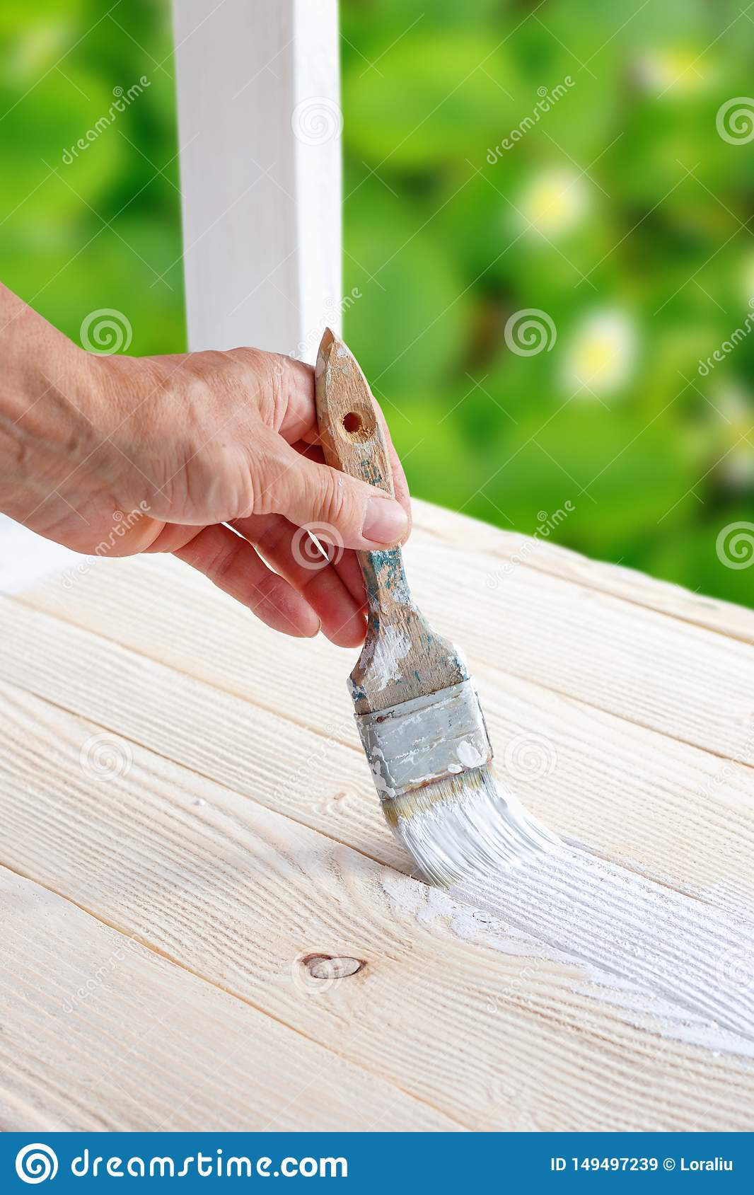 Worker Painting White Wooden Furniture Outdoor Stock Image Image Of Garden Emulsion 149497239