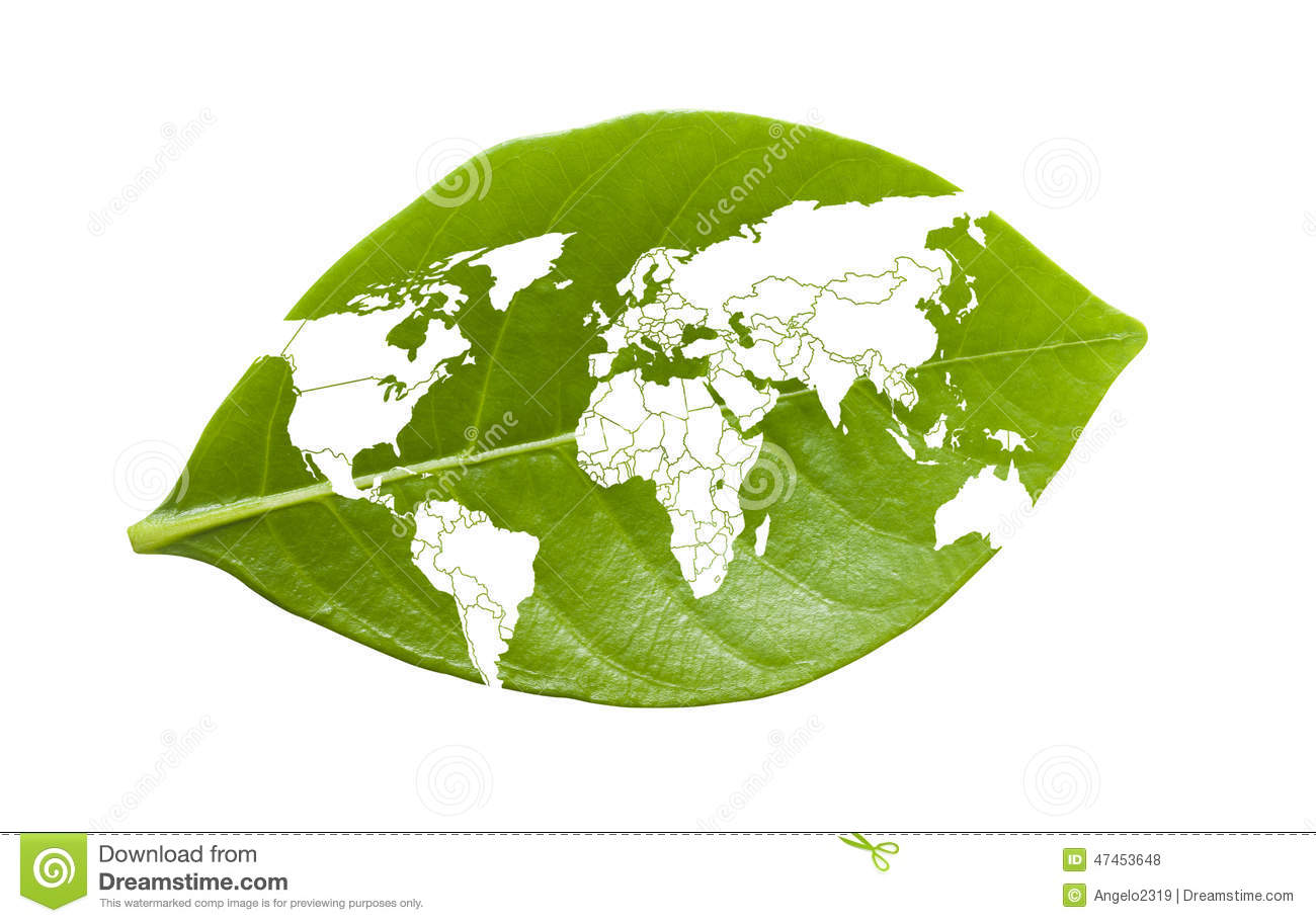 World Map On Leaf Stock Photo