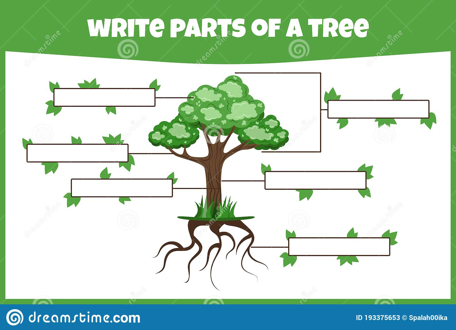 Write Parts Of A Tree Think And Write Learning Words