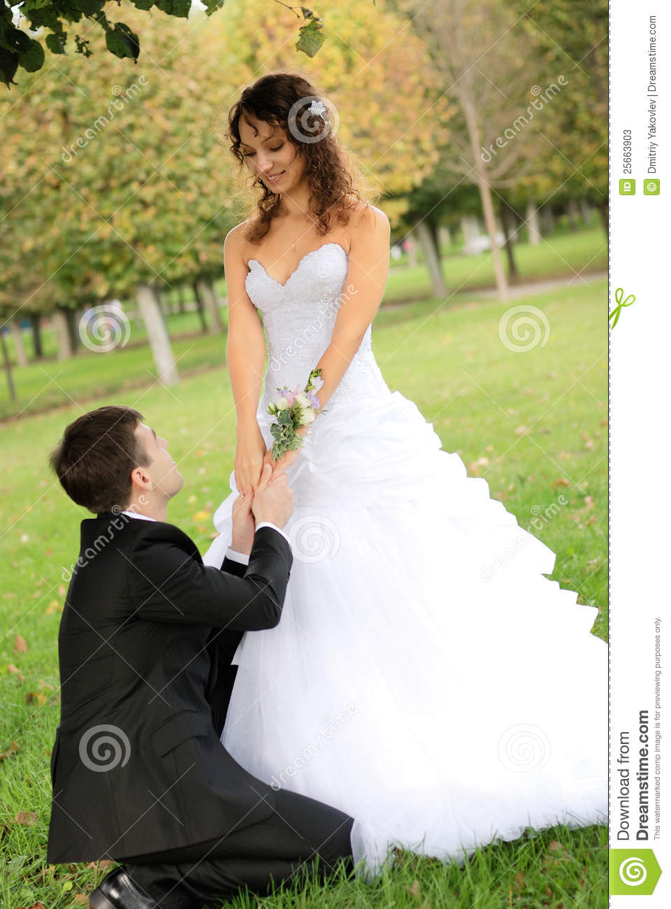 Young Bride With Bridegroom Stock Photos Image 25663903