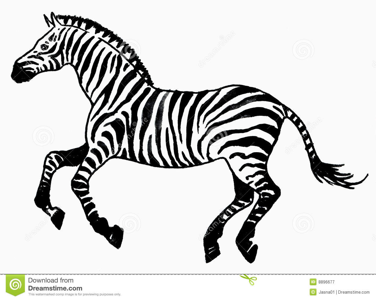 Zebra Animal Royalty Free Stock Photography