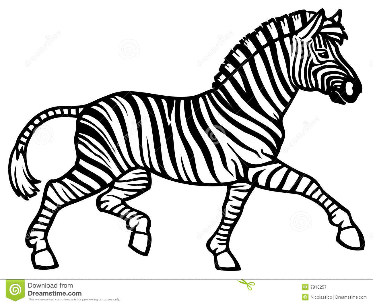 displaying 18 gt images for zebras clipart