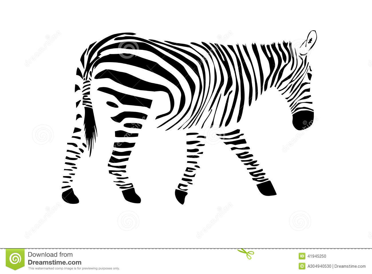 Zebra Stock Illustration