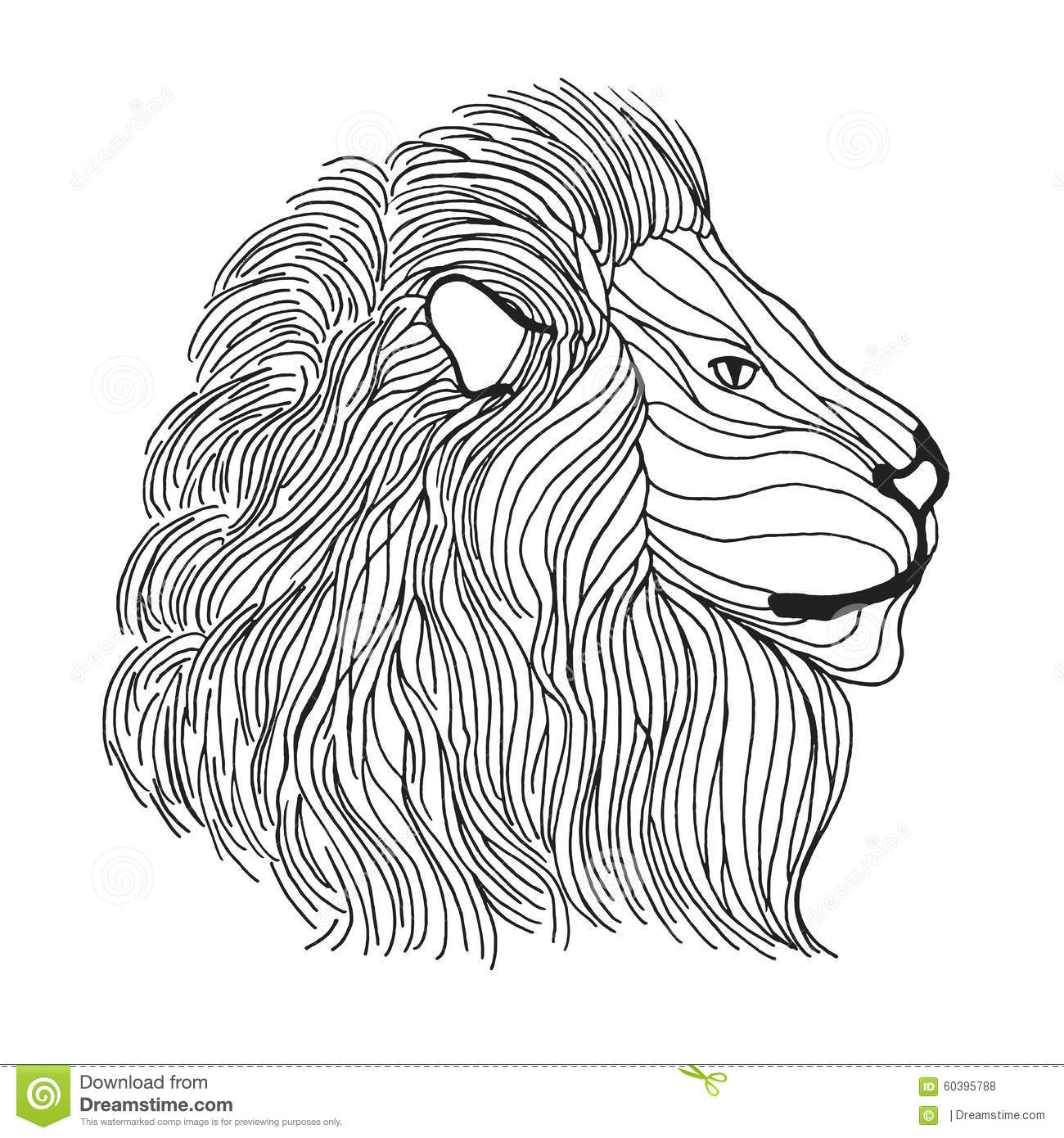 Zentangle Stylized Lion Head Sketch For Tattoo Or T Shirt