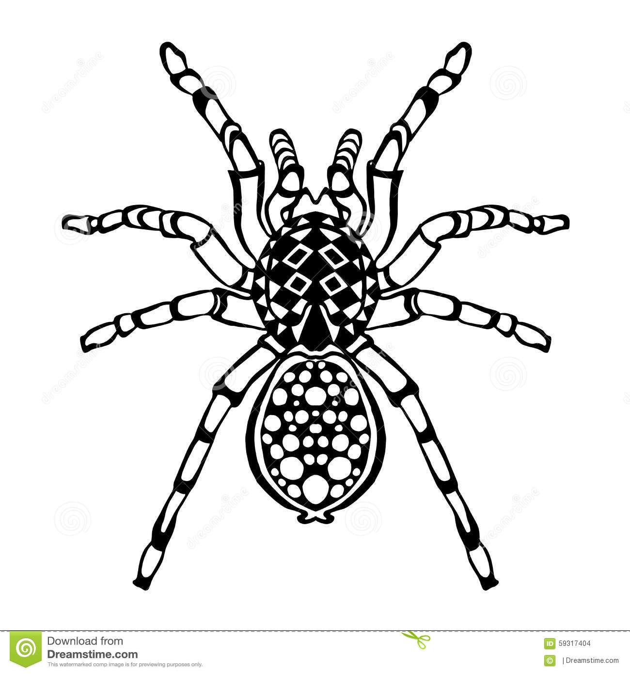 Zentangle Stylized Spider Sketch For Tattoo Or T Shirt