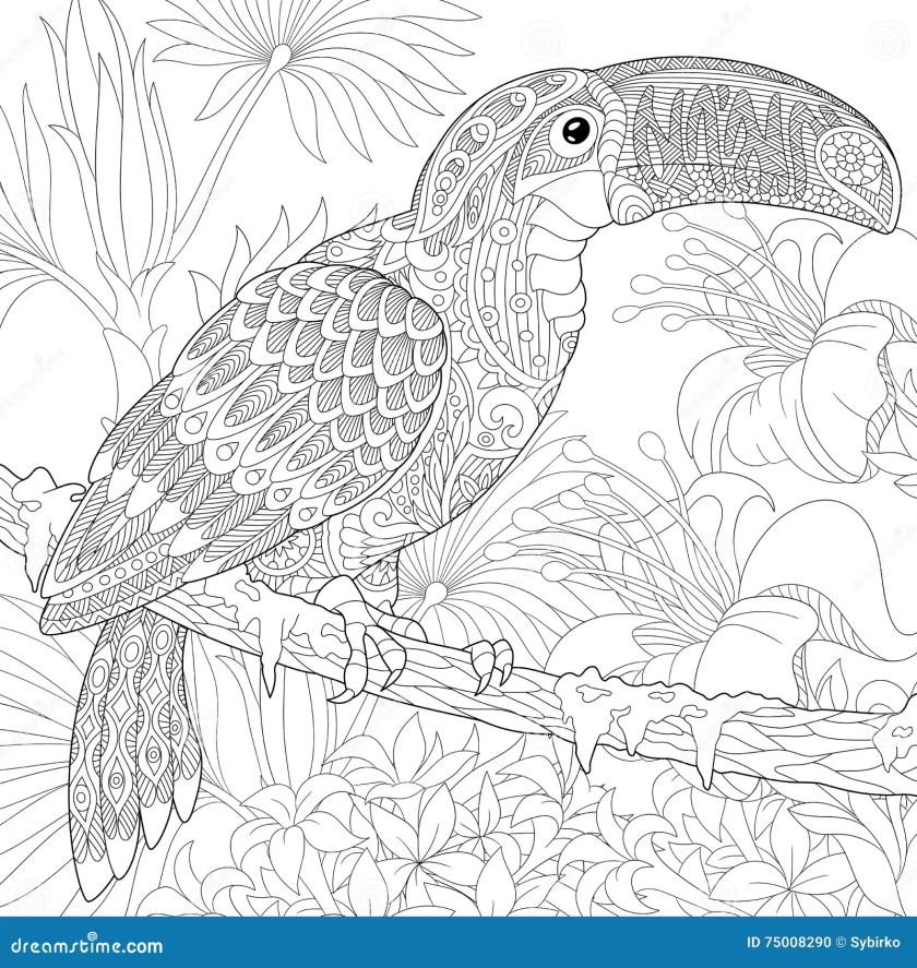 zentangle stylized toucan stock vector. illustration of