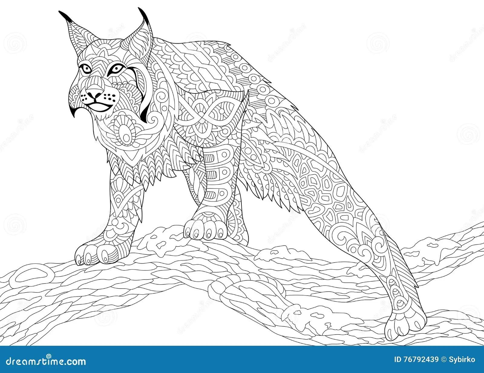 Cartoon Bobcat Cartoons Illustrations Amp Vector Stock