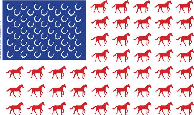 Image result for horse flag