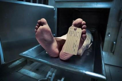 Image result for homicídio