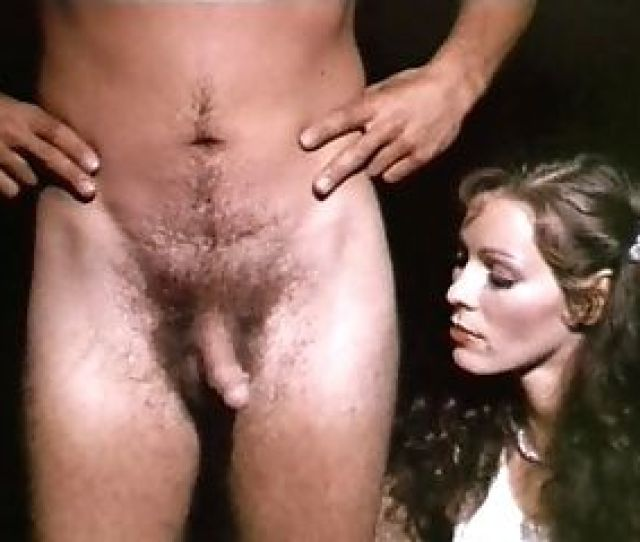 Erotic Television Vid