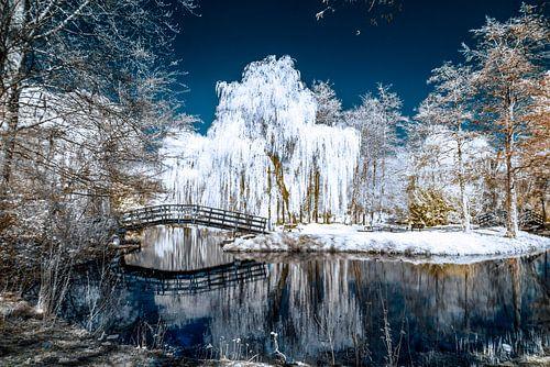Park Buitenoord in Barendrecht