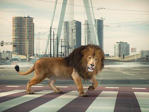 Urban Wild I