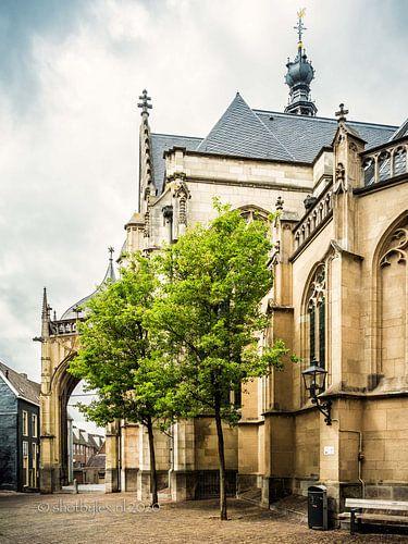 Entree st Stevenskerk