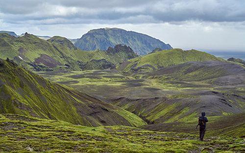 Wandelaar in groen berglandschap IJsland