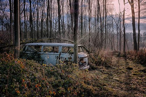 VW Bus Lost in the Woods