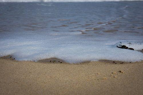 Schuimkop aan zee