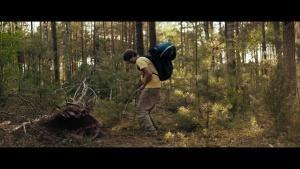 Nobody Sleeps in the Woods Tonight 2020