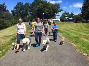 Thumbs Up Community Dog Walks