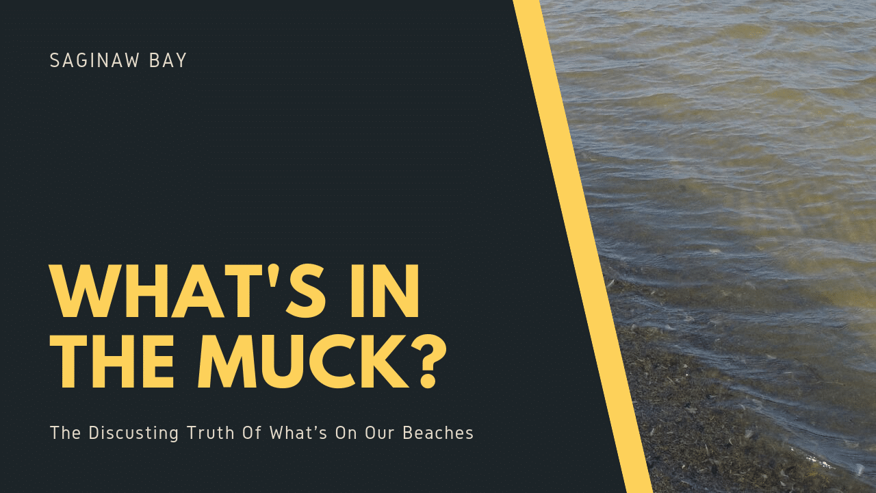 Muck Feature Image