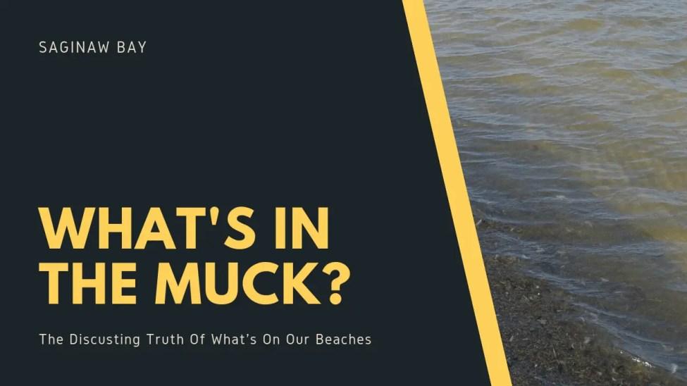 Lake Huron Muck
