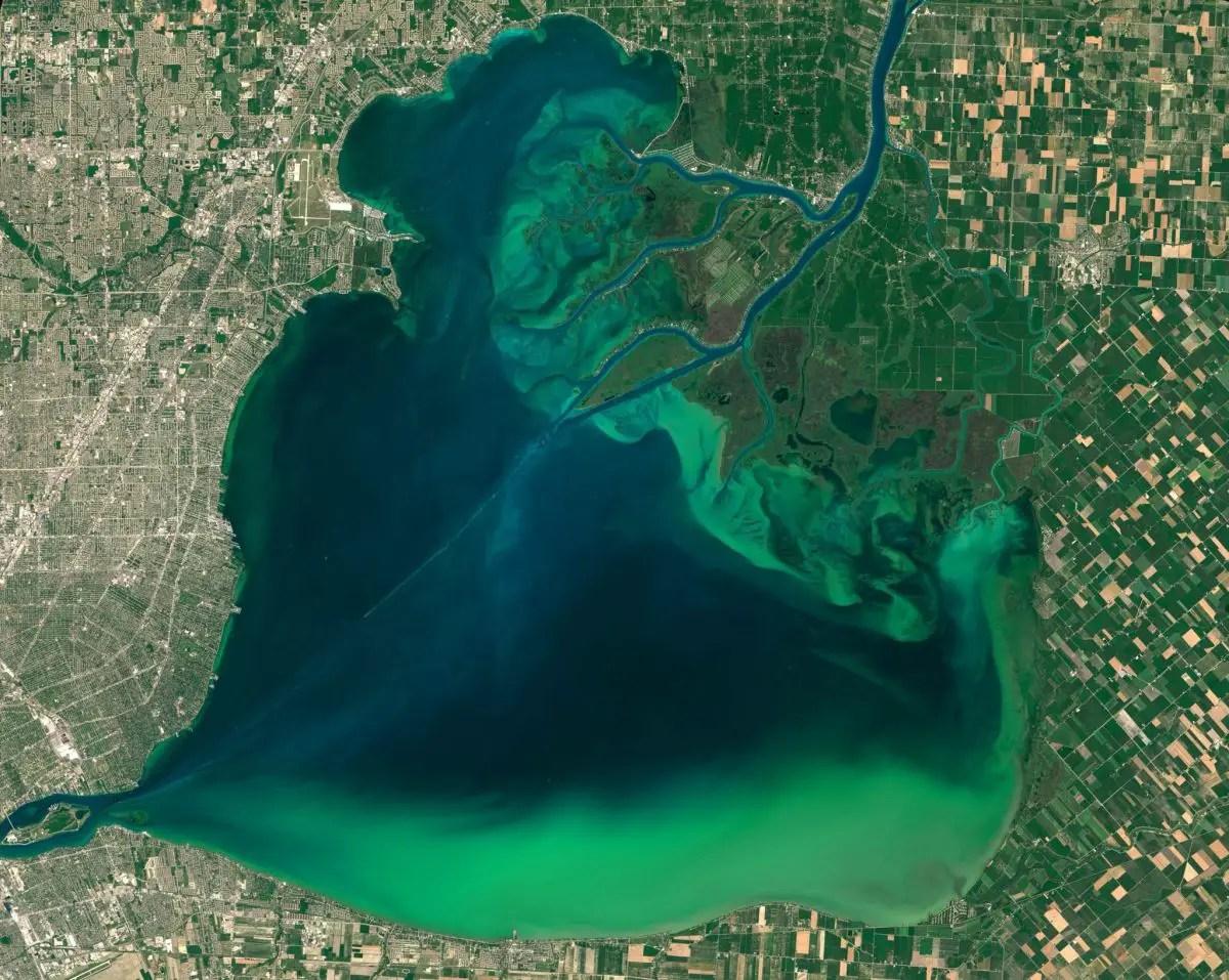 Algae Bloom Seen From Space